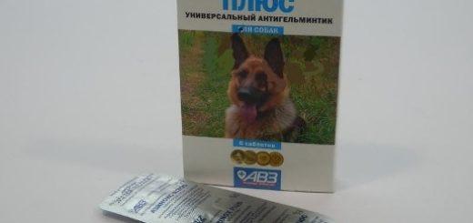 Азинокс для человека, собак и кошек