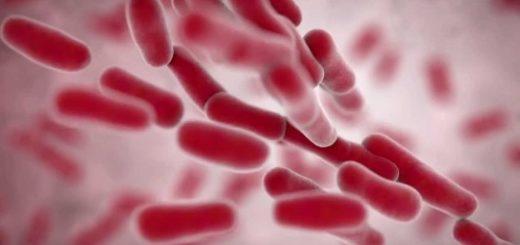 Симптомы и лечение Клебсиеллы