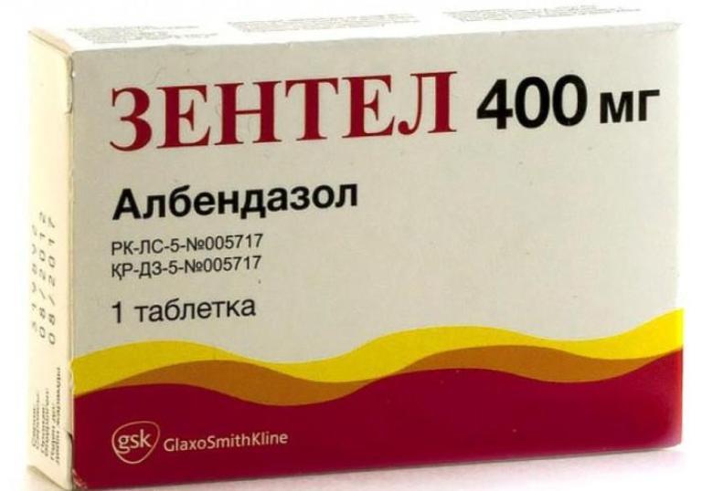 Зентел: инструкция по применению, таблетки, суспензия, цена, отзывы.