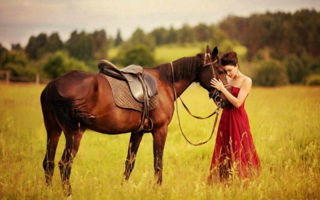 Женщина рядом с лошадью